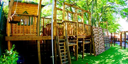 Playground Tree House